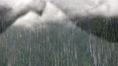Mount Analogue.2010 .jpg